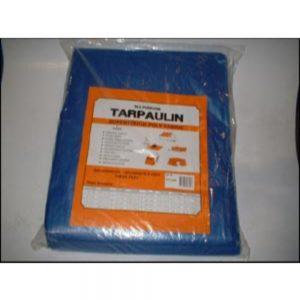 Tarpmaster Blue Utility Tarp