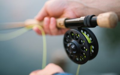 Rods, Reels & Bait – The Best of Our Fishing Gear