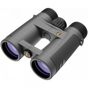 Leupold Pro Guide 10x42mm Binoculars