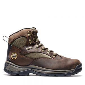 Timberland Men's Chocorua Boot